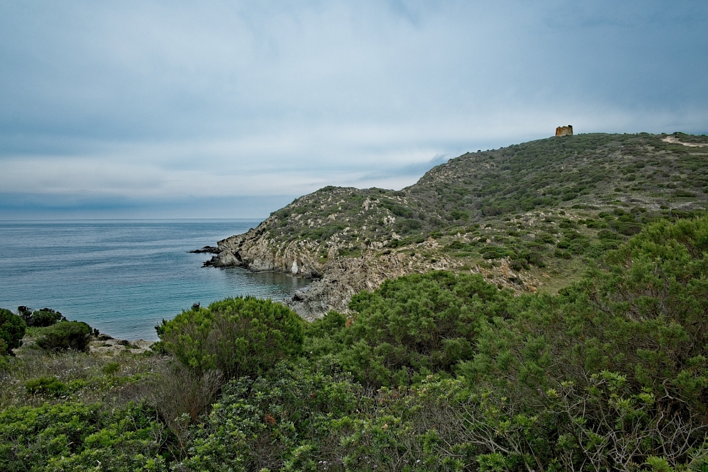 Vacation-in-Sardinia-2018-10.jpg